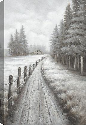 Fenced Pathway