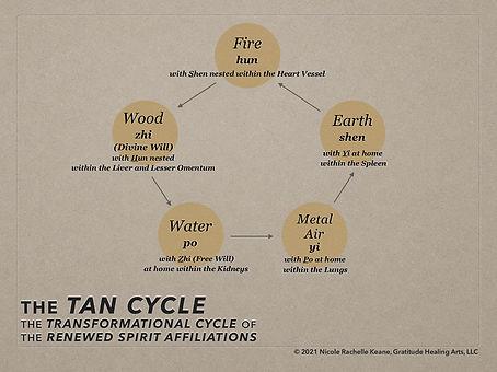 The Tan Cycle, copyright 2021 GHA LLC.jp