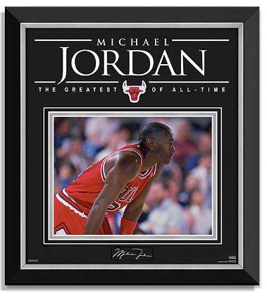 Michael Jordan II
