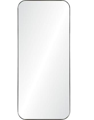 Delphinus Mirror