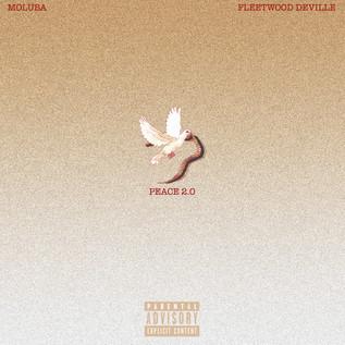 Peace 2.0 by Moluba ft. Fleetwood Deville
