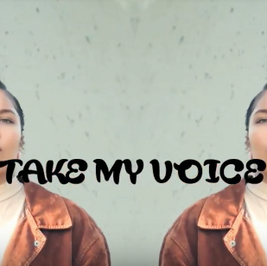 Don't Take My Voice by Danielle Shavonne