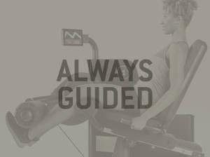 always_guided_biocircuit.jpg