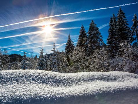 winter_04.jpg