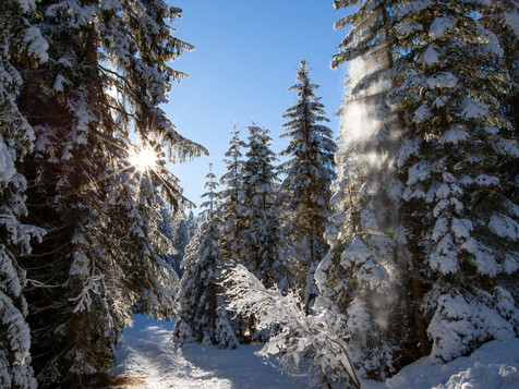 winter_07.jpg