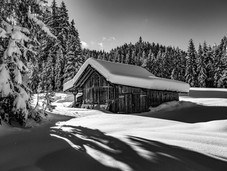 bn_winter_25.jpg