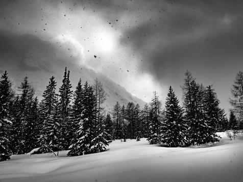 bn_winter_33.jpg