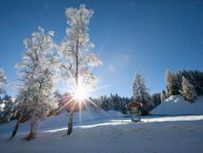 winter_31.jpg