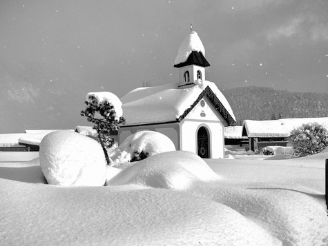 bn_winter_27.jpg