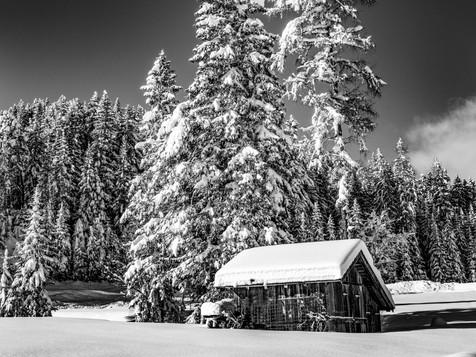 bn_winter_24.jpg