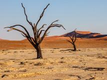africa6.jpg