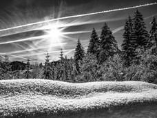 bn_winter_26.jpg