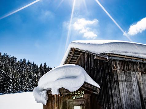 winter_19.jpg