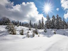 winter_16.jpg