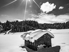 bn_winter_20.jpg
