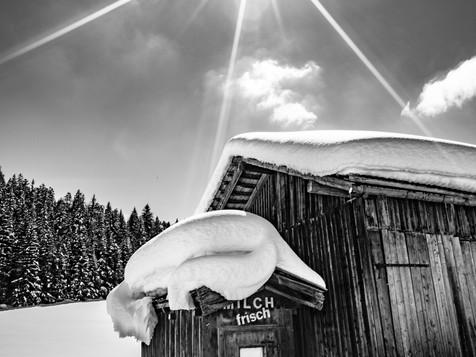 bn_winter_21.jpg