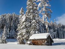 winter_22.jpg