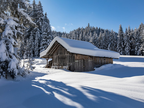 winter_24.jpg