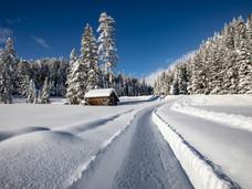 winter_12.jpg