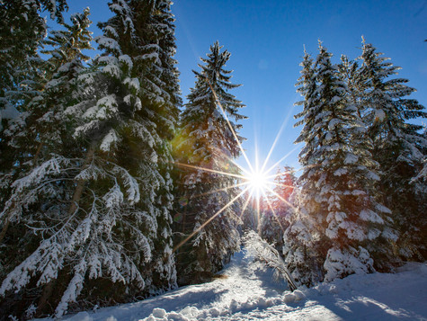 winter_23.jpg