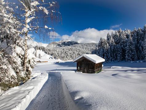 winter_05.jpg