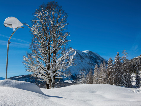 winter_27.jpg
