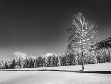 bn_winter_02.jpg