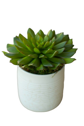 Faux Succulent in White Vase