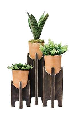 Planter Stand & Plants