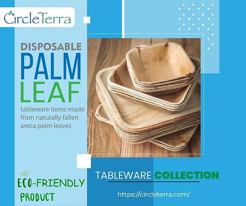 Palm Leaf Bowls.jpg