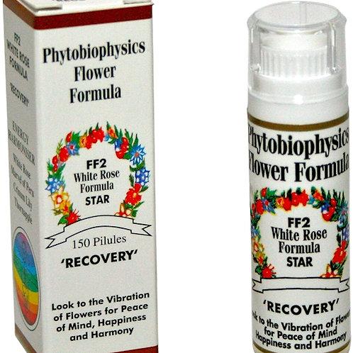 FF2 Phytobiophysics