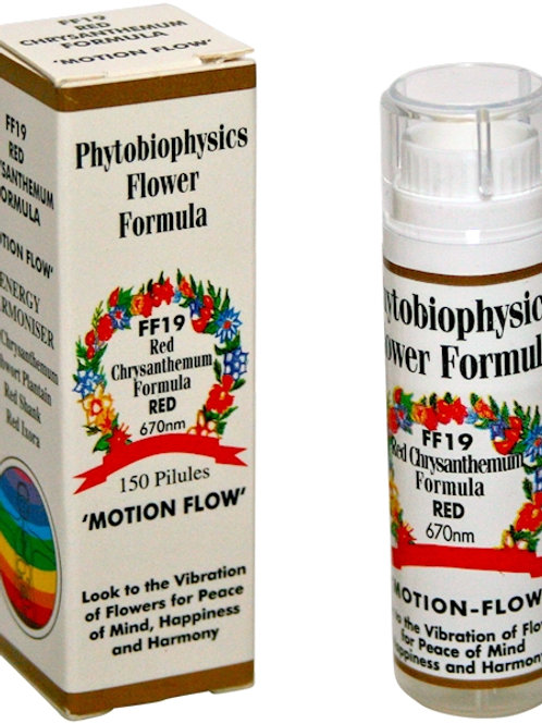 FF19 Phytobiophysics