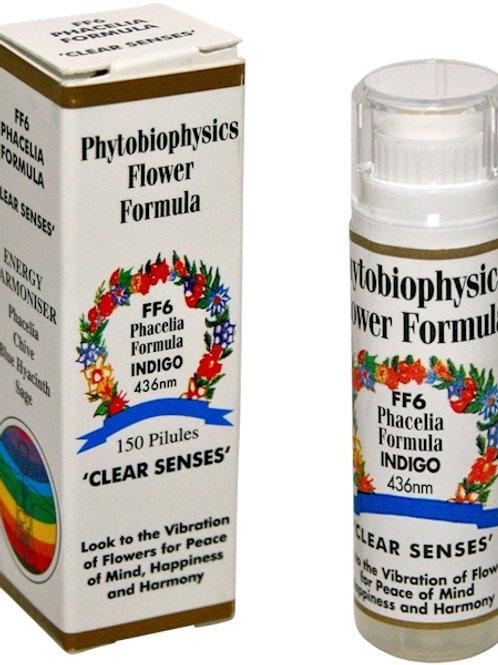 FF6 Phytobiophysics
