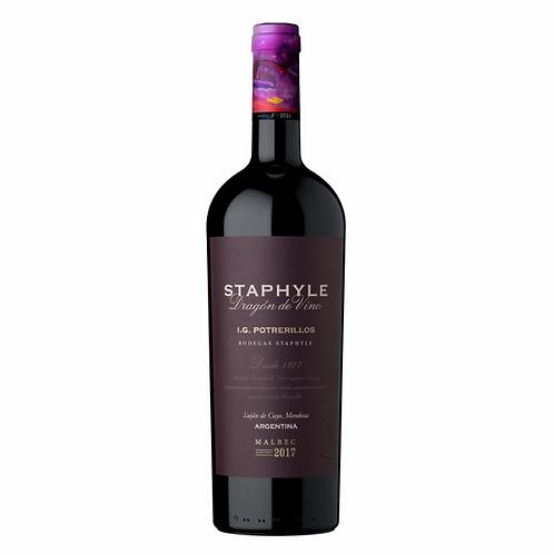 Staphyle Dragon -  Malbec