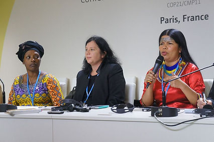 Photo-1---COP22WomenAdvocating-EmilyAras