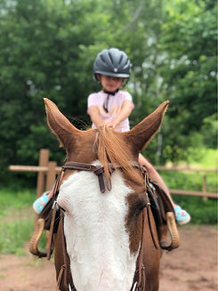 Little Lil Pony adventure