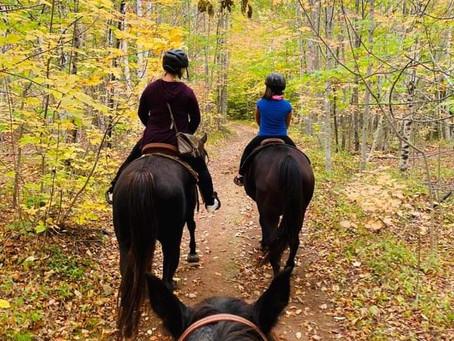 10 Health Benefits of Horseback Riding