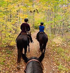 Trails adventure