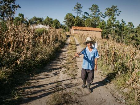 Guatemalan Climate Change Refuges - WLRN