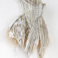 Broom Straw Corset