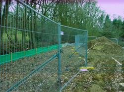 Tree protection Surrey