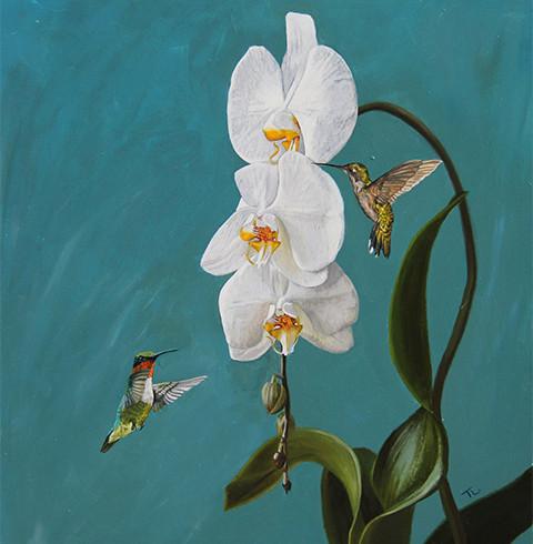 Pair of Humming Birds