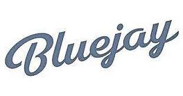 BlueJay.jpeg