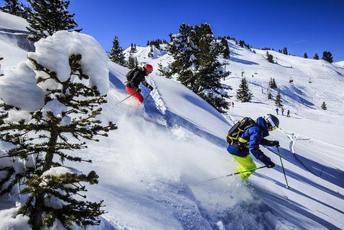 batons-de-ski