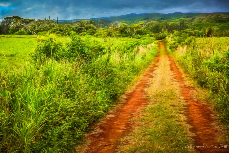 Red Dirt Road at Puu o Hoku