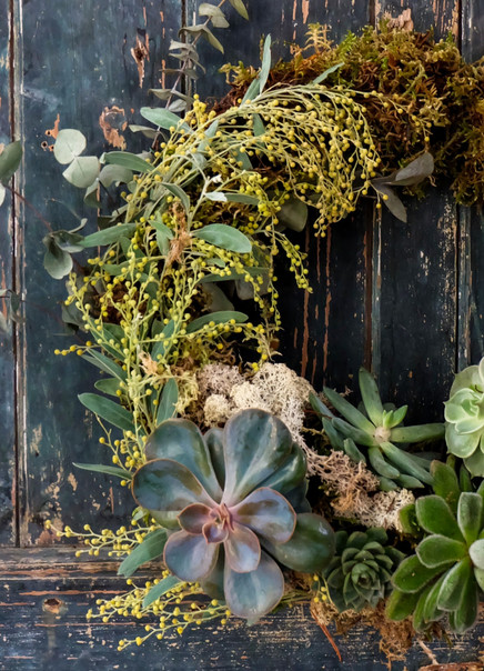 Moss based living wreath with succulents