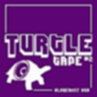 turtle tape.jpg