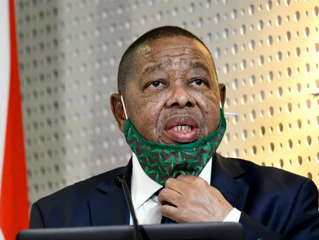 Siya Khumalo | Blade Nzimande can't cut fees because government can't stop corruption