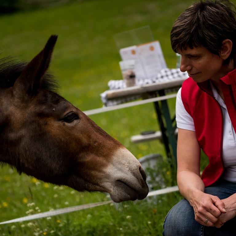 Tiergestützes Coaching - Handeln im Hier und Jetzt