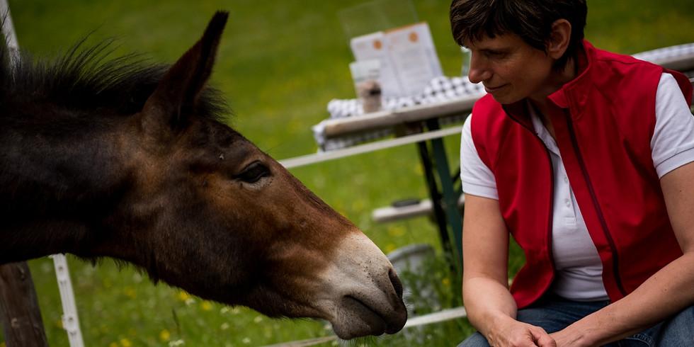 Tiergestütztes Coaching - Handlungsfähigkeit